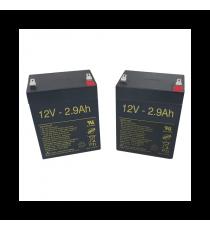 Baterías para grúa 2.9Ah-12V